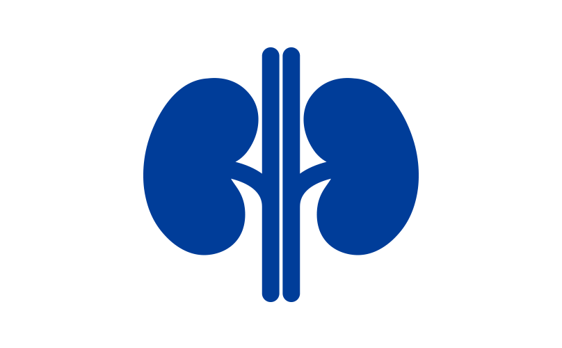 Blue vector kidneys